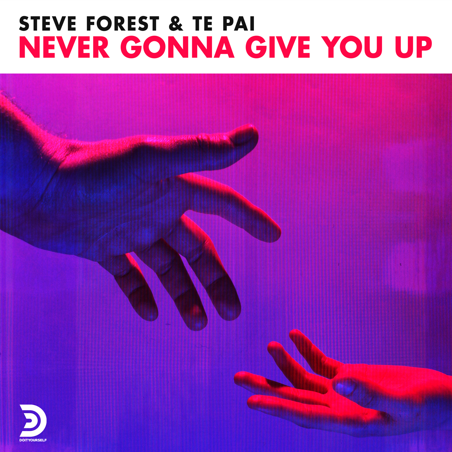 STEVE FOREST, TE PAI - Never gonna give you up