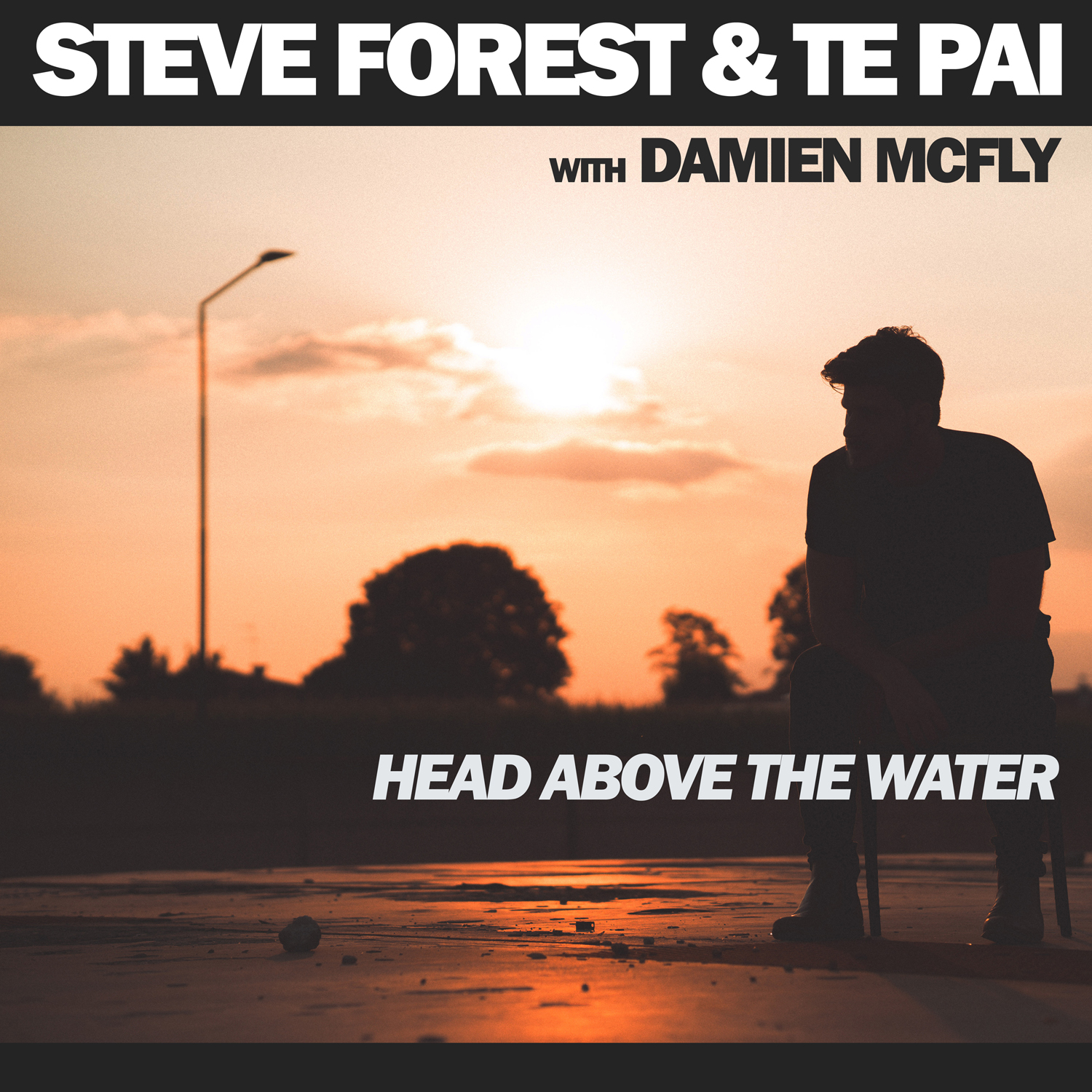 STEVE FOREST & TE PAI with DAMIEN MCFLY - Head above the water
